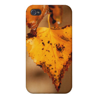 Autumn Leaves iPhone 4/4S Covers