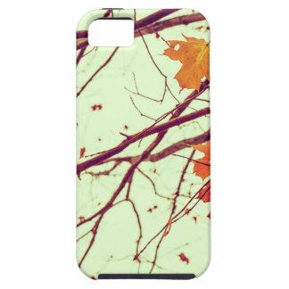 Autumn Leaves iPhone 5 Cases