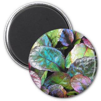 autumn leaves refrigerator magnet