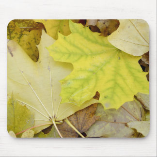 Autumn Leaves Mouse Pad
