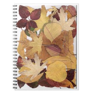 Autumn Leaves Notebooks