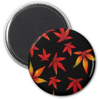 Autumn Leaves On Black 6 Cm Round Magnet