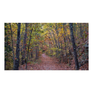 Autumn Leaves on the Canyon Trail Poster