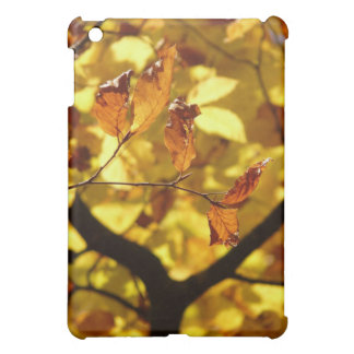 Autumn leaves photo print case for the iPad mini