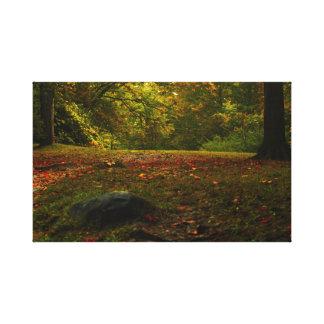 Autumn leaves Pucker street Dam Niles Michigan Canvas Print