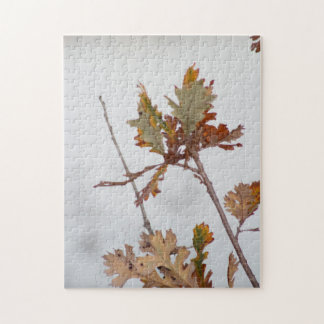 Autumn Leaves Puzzle