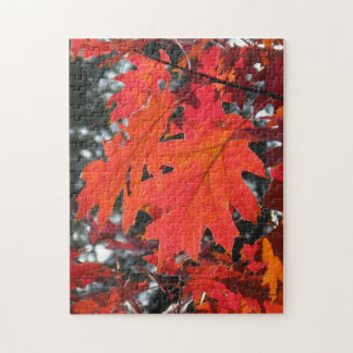 Autumn Leaves Puzzles