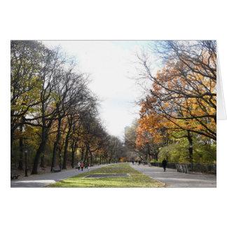Autumn Leaves Riverside Park New York City NYC Card