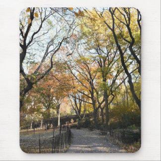 Autumn Leaves Riverside Park New York City NYC Mouse Pad