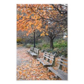 Autumn Leaves Riverside Park New York City NYC Photo Print
