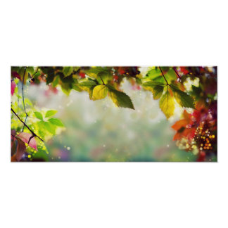 Autumn, leaves, sheets, colored. Panorama Poster