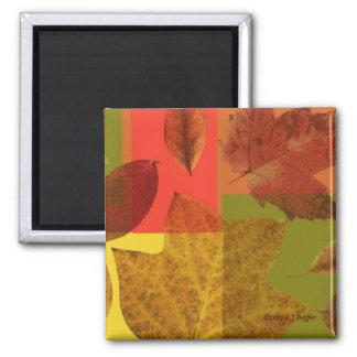 'Autumn Leaves' Square Magnet