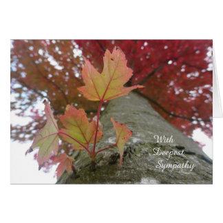 Autumn Leaves Sympathy Card
