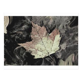 Autumn Maple Leaf Art Postcard