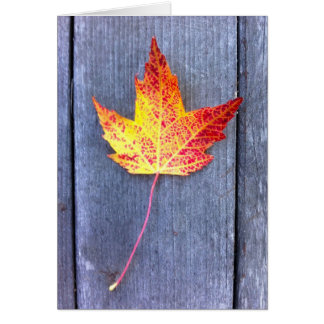 Autumn Maple Leaf Note Card