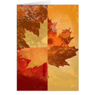 Autumn, Maple Leaf Greeting Card