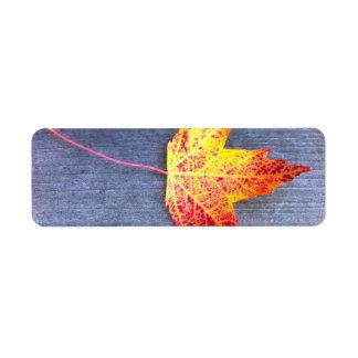 Autumn Maple Leaf Return Address Label