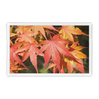Autumn Maple Leaves Floral Acrylic Tray