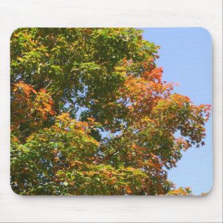 Autumn Maple tree in Full Colour Mouse Pad