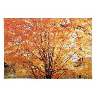 Autumn Maple Tree Placemats