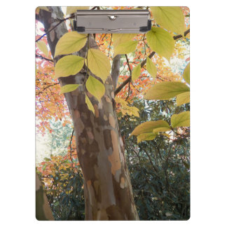 Autumn Moment Floral Clipboard