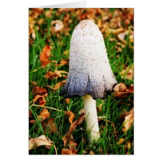 Autumn Mushroom Card