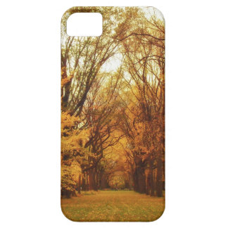 Autumn - New York City iPhone 5 Cover