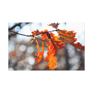 Autumn orange leaf gallery wrapped canvas
