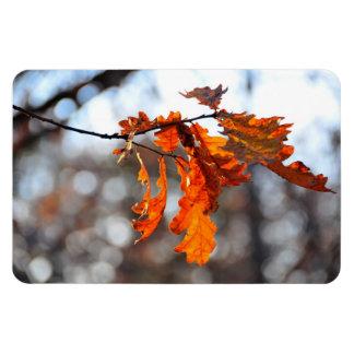 Autumn orange leaf flexible magnet