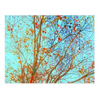 Autumn Orange Leaves and Blue Sky Postcard