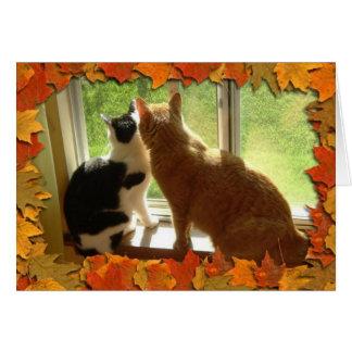 Autumn Orange Tabby Cats Card