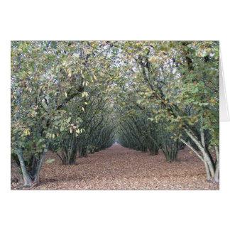Autumn Orchard Card