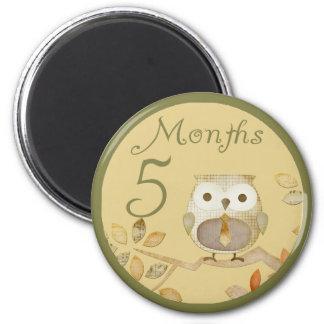 Autumn Owl 5 Months Magnet
