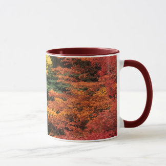 Autumn Palette Mug