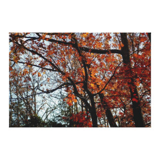 Autumn Paradise Gallery Wrapped Canvas