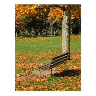 Autumn Park Bench Postcard