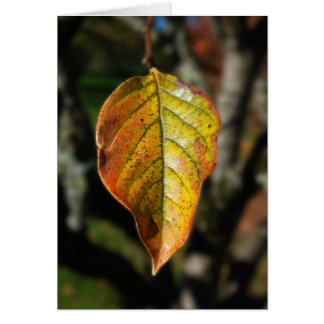 Autumn Persimmon Leaf Greeting Card