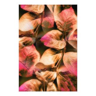 Autumn Photo Print