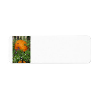 Autumn Pumpkin garden Address Label