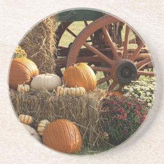 Autumn Pumpkins And Mum Display Drink Coaster