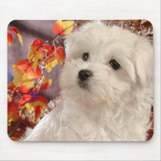 Autumn Pup Mouse Pad