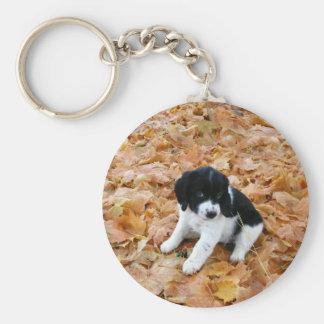 Autumn Puppy Basic Round Button Key Ring
