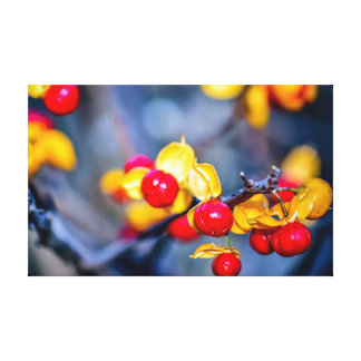 Autumn Red Berry and Yellow Leaf Stretched Canvas Print
