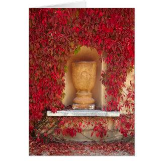 Autumn red foliage, New Zealand Card