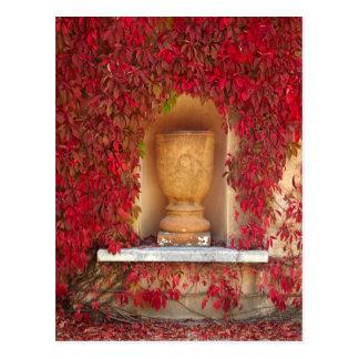 Autumn red foliage, New Zealand Postcard