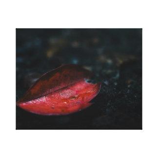 Autumn Red Leaf Canvas Print