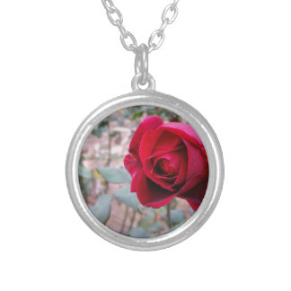 Autumn red rose silver plated necklace
