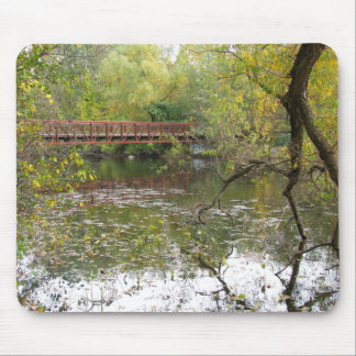 Autumn Reflections Mouse Pad