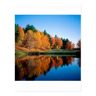 Autumn Reflections Vermont Postcard