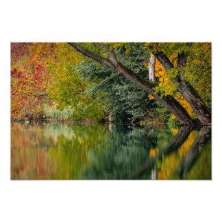 Autumn River Art Photo